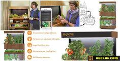 Grove Ecosystem – Menanam Sayuran Dalam Ruangan