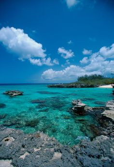 Grand Cayman Islands - I have been here. Loved it! Especially the sting ray tour. And the rum cake. Lol