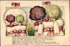 immature cabbage ~ 1916