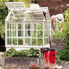 mini greenhouse in garden Diy Mini Greenhouse, Diy Greenhouse Plans, Greenhouse Gardening, Cold Frame, Old Windows, Garden Structures, Garden Beds, Garden Projects, Garden Inspiration