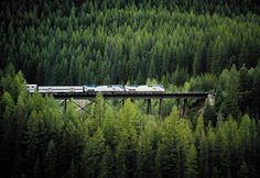Seattle to Chicago via Glacier National Park - Empire Builder Route on Amtrak. How fun!