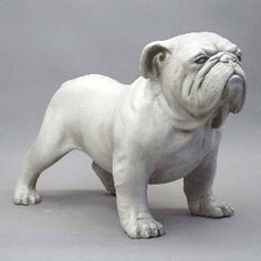 Life Size Bulldog Statue.Shown here standing in a defensive position. Excellent representation of the beloved bulldog. Several color choices available for this piece