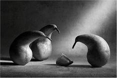 Photograph Farewell, dear friend! by Victoria Ivanova on 500px