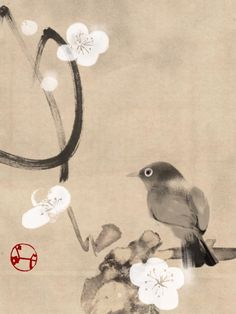 Hidetoshi Mito 梅に目白 White eyes and Plum blossoms