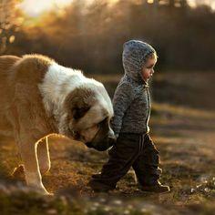 Little boy with big loving friend!