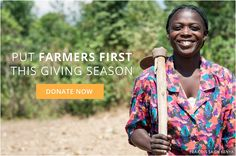 One Acre Fund puts Farmers First in everything that we do. By listening to our boss, we created a simple new way for her to significantly increase farm income on every planted acre.