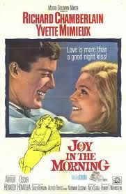 Watch Joy in the Morning full hd online Directed by Alex Segal. With Richard Chamberlain, Yvette Mimieux, Arthur Kennedy, Oskar Homolka. Carl Brown and Annie McGairy are in love. 1960s Movies, Old Movies, Vintage Movies, Richard Chamberlain, Joy In The Morning, Yvette Mimieux, Metro Goldwyn Mayer, Old Hollywood Movies, Jerry Lewis