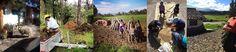 Farmers, Agritourism Ecuador, Farm Stay, Bed & Breakfast, Vacation Rental, Family Vacations & Horseback Riding