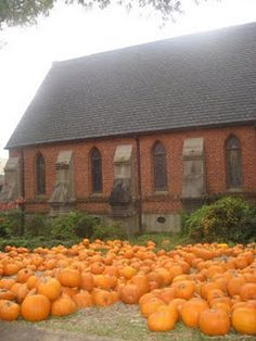 Pumpkin Patch, Saint Peter's Episcopal Church, Oxford, MS  I always loved when the pumpkins came in at St. Peters!