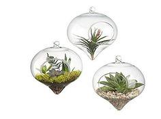 Siyaglass Pack of 3 Hanging Glass Vse Terrarium Heart Shape Wedding Home Deco