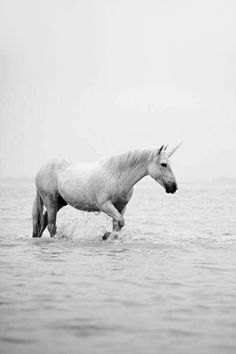It's like all of the bad stuff is just training so that you can fly higher into the light, on magic wings, over the rainbow, on a white unicorn, with your best friends, and live happily-ever-after.