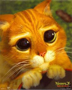 """""""Kitty Eyes"""" Puss in Boots - Shrek 2 - DreamWorks Animation and like OMG! get some yourself some pawtastic adorable cat apparel! Cartoon Meme, Cartoon Cats, Jw Humor, Image Chat, Gb Bilder, Photo Chat, Big Eyes, Cat Memes, Kitty Cats"""