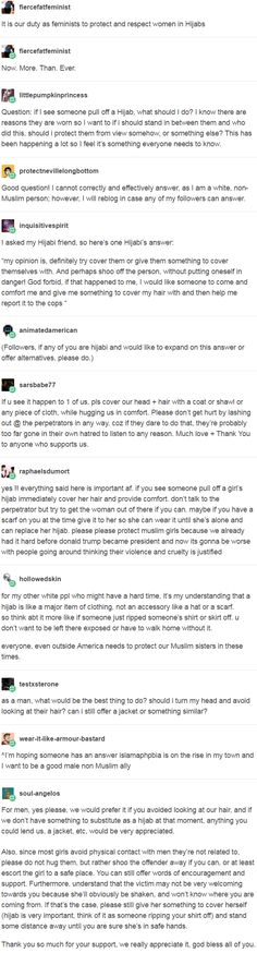 It is our duty as feminists to protect and respect women in Hijabs. http://narwhal-noir.tumblr.com/post/157068250407/geekandmisandry-d6-da-maniac