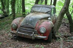 Vintage Supercars Deliberately Left To Rust And Rot - Daily News Dig (shared via SlingPic)