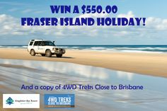 Win a Fraser Island Holiday for the launch of Treks Close to Brisbane! Win A Holiday, Fraser Island, Forest Trail, Kingfisher, Dog Photography, Weekend Trips, Along The Way, Day Tours, Oh The Places You'll Go