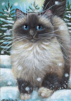Ragdoll Cat Winter Snow - Painting in Acrylics