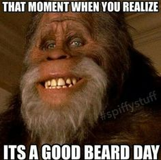 Good beard day