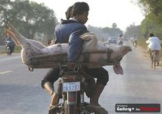 ..only in cambodia :)