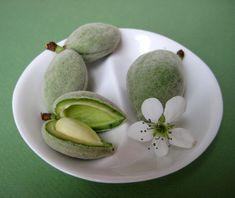 Chaghale Badoom - Fresh Spring Almond:  favorite spring bounty in Iran