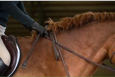 Why This Olympic Medalist Recommends Knotting Your Reins