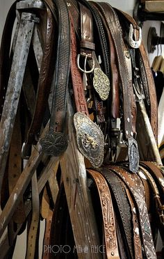 I have lots and lots of belts...dont know why ~ just did it
