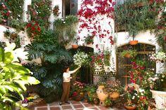 58 cosas que hay que hacer en Andalucía una vez en la vida.