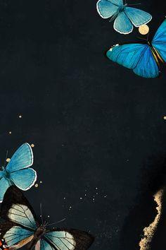 Blue butterflies patterned on black background vec Butterfly Wallpaper Iphone, Disney Phone Wallpaper, Iphone Background Wallpaper, Animal Wallpaper, Aesthetic Iphone Wallpaper, Butterfly Background, Butterfly Frame, Butterfly Pattern, Morpho Butterfly