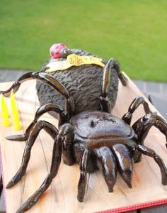 A definte cake for the spider lovers. A Funnel web spider cake. Halloween Party Appetizers, Halloween Cakes, Cupcake Cookies, Cupcakes, Funnel Web Spider, Snake Cakes, Spider Cake, Bug Cake, Funny Cake