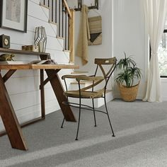 New Totally Free stainmaster Carpet Colors Concepts If you are a new comer to the overall game of home décor, then you might have looked for various ti Best Carpet, Diy Carpet, Modern Carpet, Wall Carpet, Carpet Decor, Outdoor Carpet, Magic Carpet, Textured Carpet, Patterned Carpet