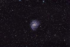 """Feuerwerk Galaxie NGC 6946. """"Die Galaxie ist relativ nah Richtung Zentrum unserer Milchstraße gelegen, daher auch die verhältnismäßig hohe Sternanzahl. Belichtet habe ich 2 Stunden und 40 Minuten."""" Fotografiert von Julian aus der Christian-Mayer-Volkssternwarte Schriesheim (c) www.volkssternwarte-schriesheim.de"""