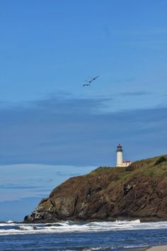Northhead Lighthouse and Pelican Rock