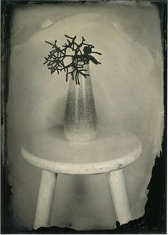 Still Life Series 2015 Karen Hook Photography Wet Plate Collodian