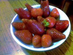 Maggio 2015: Annata da fragole....................Vintage strawberries