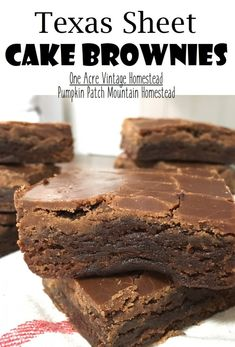 Yummy gooey soft chocolate fudge brownies topped warm with a simple cocoa powder icing made just like Texas sheet cake. Brownies Caramel, Chocolate Fudge Brownies, Cocoa Powder Brownies, Frosted Brownies, Icing Ingredients, Brownie Ingredients, Dessert For Dinner, Dessert Bars, Chocolate Chip Cookies