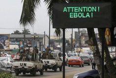 La OMS dice que el ébola puede convertirse en catástrofe humanitaria | NOTICIAS AL TIEMPO