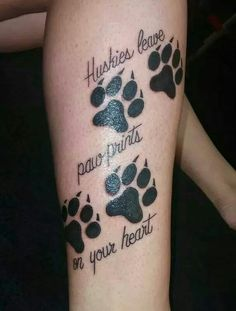 ❤ Huskies ❤
