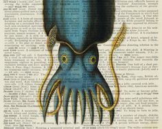 Squid Portrait - Vintage Dictionary Art Print by Faux Kiss on Etsy $12.00 PDX Etsy