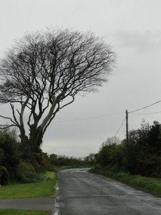 Coast road between Wicklow and Arklow Ireland