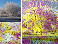 Neural networks combine photos to create beautiful art : theCHIVE
