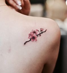 Cherry Blossom Tattoo Designs are accepted by many people as these are mainly nature-themed tattoos. Hence, here we are giving you 9 Cherry Blossom Tattoo D Cute Small Tattoos, Mini Tattoos, Trendy Tattoos, Body Art Tattoos, Tatoos, Unique Tattoos, Tattoo Small, Tattoos On Scars, Thigh Tattoos