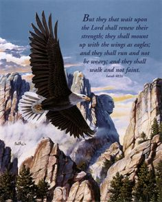 """Isaiah """"But they that wait upon the Lord shall renew their strength; they shall mount up with wings as eagles; and they shall run and not be weary; and they shall walk and not faint. Patriotic Pictures, Eagle Pictures, Eagle Images, Healing Scriptures, Bible Scriptures, Scripture Verses, Wait Upon The Lord, Eagle In Flight, Wings Like Eagles"""