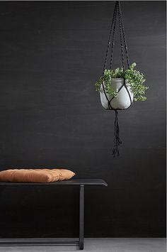 . Plant Hanger, My House, Planter Pots, Home Decor, Decoration Home, Room Decor, Home Interior Design, Home Decoration, Interior Design
