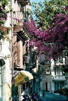 Flowered Covered Street -  DonnaCorless