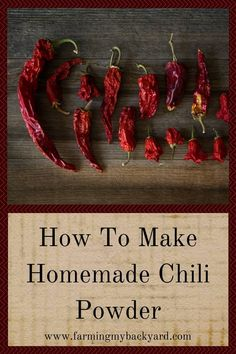 Homemade chili powder is super easy to make, all you need are dried chilis and a blender! Homemade Chili, Homemade Spices, Homemade Seasonings, How To Make Chili, How To Make Homemade, Making Chili, Make Sour Cream, Dried Peppers, Canning Recipes