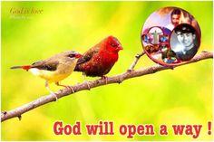 New slideshow: Love Jesus Deeply 7/8/2014