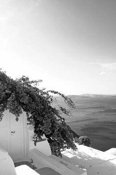 Greece, bougainvillea in bloom Santorini Grecia, Santorini Island, Mykonos, Bougainvillea, The Places Youll Go, Places To Go, Beautiful World, Beautiful Places, Cap Vert