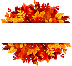 beautiful autumn leaves vector background graphics