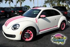 Breast Cancer Bug....