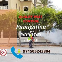 Quality Pest control leading pest control company has 15 years of experience in fumigation services. Call us now for all type of fumigation services Fumigation Services, Pest Control Services, Best Pest Control, Sharjah, 15 Years, Type, 15 Anos