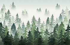 Create a relaxed misty forest scene in your space that's full of creative charm with this green tree silhouette wallpaper. Buy now with fast worldwide delivery! Tree Silhouette Wallpaper, Silhouette Painting, Forest Mural, Forest Theme, Enchanted Forest Nursery Theme, Misty Forest, Pink Forest, Nursery Wallpaper, Tree Wallpaper Bedroom